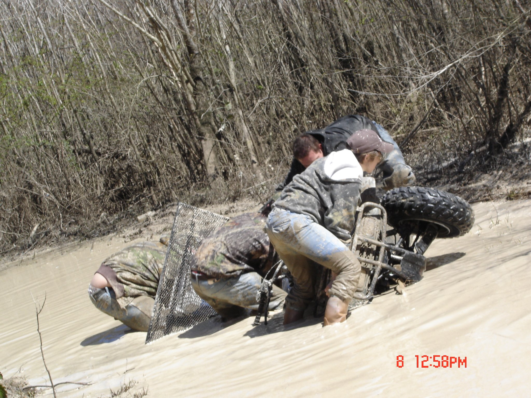 Mud/Trail Ride Pics and Videos-dsc03511.jpg